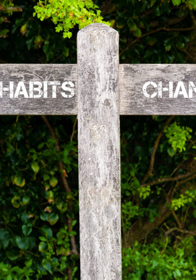 El Poder del Hábito